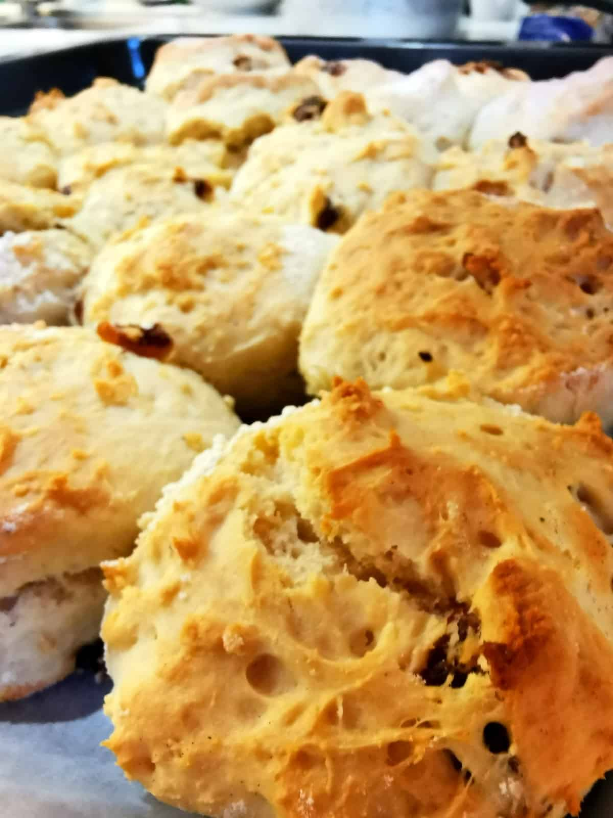 golden brown baked scones on a tray after being removed from the oven
