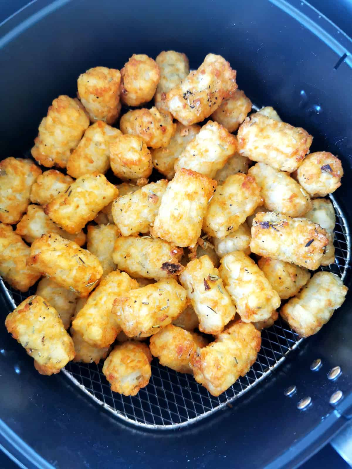 tater tots in the basket of the air fryer